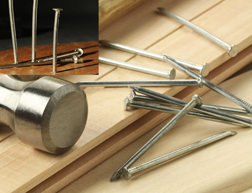 Hot Dipped Zinc Plated Wire Nails For Roof Fastening